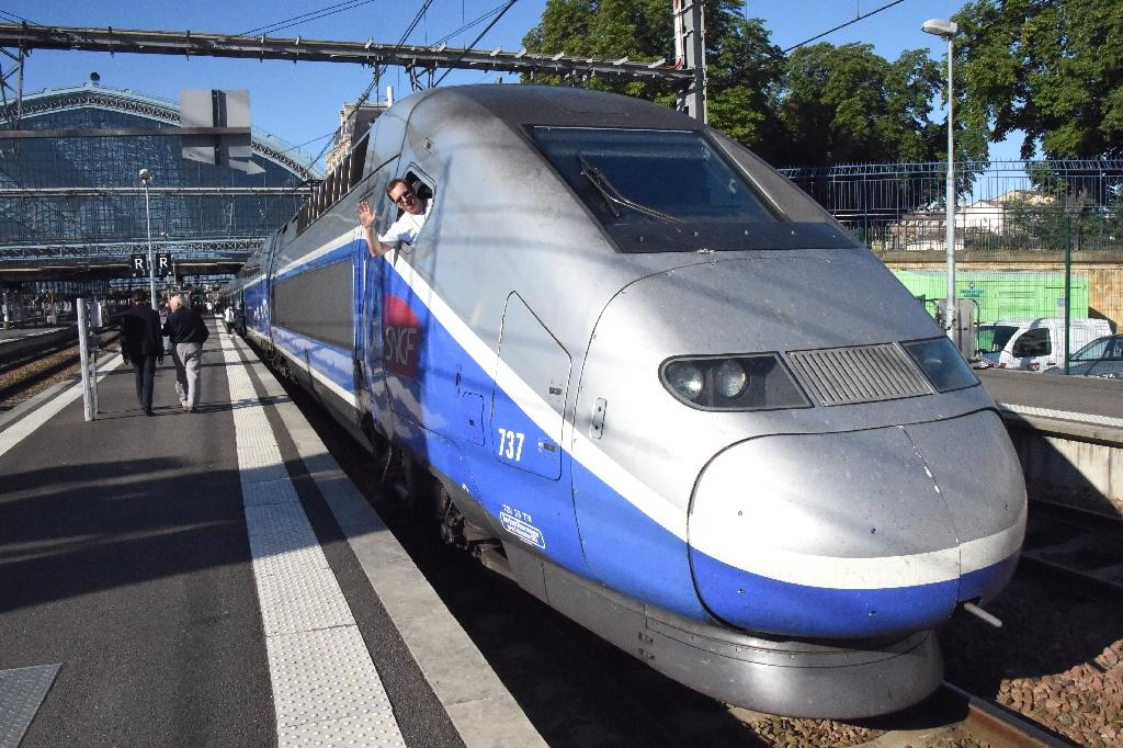 French railway operator SNCF said Wednesday it was planning to introduce prototypes of driverless mainline trains for passengers and freight by 2023, and include them in scheduled services in subsequent years.  'With autonomous trains, all the trains will run in a harmonized way and at the same speed,' SNCF chairman Guillaume Pepy said in a statement.  Many cities, including Paris, already run driverless metro trains but driverless long-distance travel presents a new set of challenges, Pepy said.