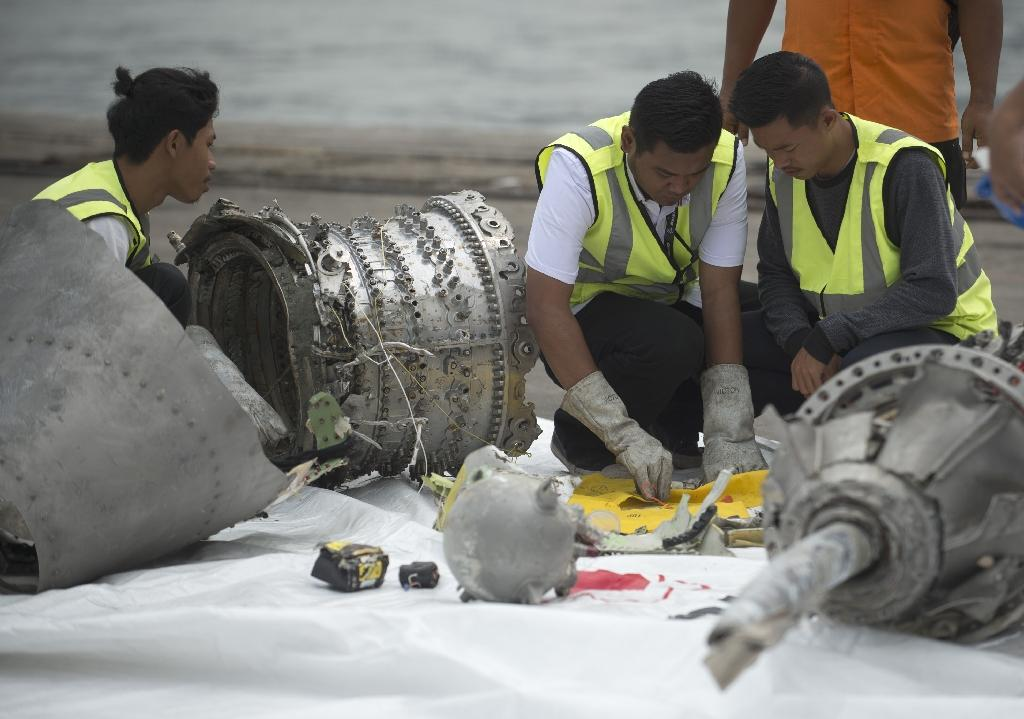 Boeing issued a special bulletin Wednesday addressing a sensor problem flagged by Indonesian safety officials investigating the crash of a Lion Air 737 that killed 189 people last week.  'The Indonesian National Transportation Safety Committee has indicated that Lion Air flight 610 experienced erroneous input from one of its AOA (Angle of Attack) sensors,' Boeing said.