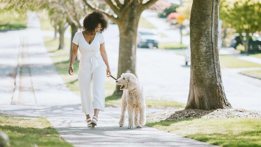 According to a new study published by Mayo Clinic, people who own pets, but especially dogs, are more likely to have better heart health.  'It's nice to see that something we enjoy, like having a dog, is related to better heart health,' Dr. Francisco Lopez-Jimenez, study author and chair of the Division of Preventative Cardiology at Mayo Clinic, told ABC News in an interview.  'It's very difficult not to increase the level of activity after you get a pet, in particular, a dog … It makes more sense … they move around.