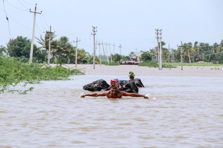 Indian authorities have moved around a million people into emergency camps in recent days as the death toll from monsoon floods jumped Monday to at least 184.  The southern state of Kerala, a tourist haven known for its beaches, hill resorts and backwaters, has been the worst hit region for the second consecutive year, forcing the closure of the Kochi international airport for three days last week.  'At least 76 people have died, 58 are missing and another 32 have received injuries,' Pramod Kumar, Kerala police spokesman, told AFP.